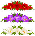 Beautiful bouquets from orchids Royalty Free Stock Image