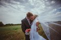 Beautiful bride and groom standing in grass and kissing. Wedding couple fashion shoot. Royalty Free Stock Photo