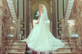 Beautiful bride indoors in the casle Stock Images