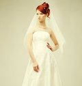Beautiful bride in a luxurious wedding dress studio shot Royalty Free Stock Photo