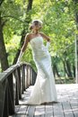 Beautiful bride outdoor Royalty Free Stock Image