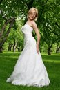 Beautiful bride in the park Stock Photography