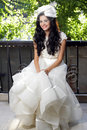 Beautiful bride posing Stock Images