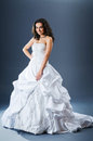Beautiful bride in studio Royalty Free Stock Photos