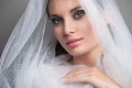 Beautiful bride with veil over her face portrait wearing professional make up Royalty Free Stock Photos