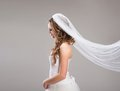 Beautiful bride with veil portrait of isolated over gray background Stock Image