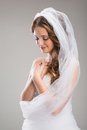 Beautiful bride with veil portrait of isolated over gray background Stock Photos