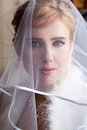 Beautiful bride in a veil pulled down over his face Royalty Free Stock Photos