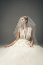 Beautiful bride wearing luxurious wedding dress Stock Photography