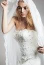 Beautiful bride woman in wedding dress and veil
