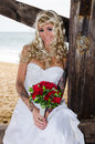 Beautiful bride young under the pier at the beach just married Stock Photos