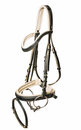 Beautiful bridle with bit isolated on white Royalty Free Stock Photography
