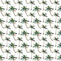 Beautiful bright cute green tropical lovely wonderful hawaii floral herbal summer pattern of a beach sunset, palm tree, sea, red s