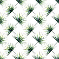 Beautiful bright green tropical wonderful hawaii floral herbal summer diagonal pattern of a palms watercolor