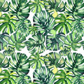 Beautiful bright green tropical wonderful hawaii floral herbal summer pattern of a monstera palms watercolor hand