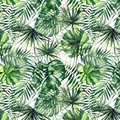 Beautiful bright green tropical wonderful hawaii floral herbal summer pattern of palms watercolor