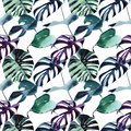 Beautiful bright tropical cute lovely wonderful hawaii floral herbal beach summer green blue violet pattern of a palms watercolor
