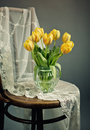 Beautiful bright yellow tulips still life glass vase antique wooden chair lace cloth Royalty Free Stock Images