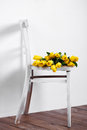 Beautiful bright yellow tulips in still life lying on antique white chair bouquet of for your favorite a room Stock Photography