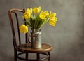 Beautiful bright yellow tulips still life old milk can antique wooden chair Stock Photography