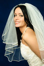 Beautiful brunette bride Stock Photos