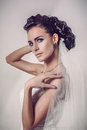 Beautiful brunette bride dressed in white dress and veil photo Stock Photography