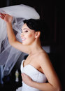 Beautiful brunette bride is getting ready in the morning Stock Image