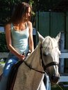 A beautiful brunette girl is riding a white horse. Royalty Free Stock Photo