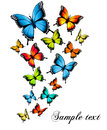 Beautiful butterfly background. Royalty Free Stock Photo