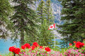 Beautiful canada canadian flag at the shores of lake moraine in banff national park alberta Stock Photography