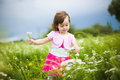 Beautiful carefree girl playing outdoors in field with high green grass little child picking up wild flowers Royalty Free Stock Image