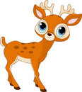 Beautiful cartoon deer Royalty Free Stock Photography