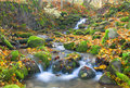 Beautiful cascade waterfall in autumn forest Stock Image