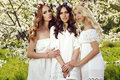 Beautiful charming girls in elegant dresses and flower's headband Royalty Free Stock Photo