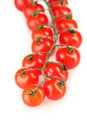 Beautiful cherry tomatoes on a branch Royalty Free Stock Photo