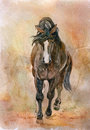 Beautiful chestnut horse watercolor picture of Stock Photography
