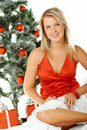 Beautiful Christmas 1 Royalty Free Stock Images
