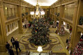 Beautiful christmas trees in a luxury hotel the fairmont olympic seattle was selling to donate to seattle children s hospital Royalty Free Stock Images