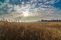Beautiful cloud formation and dried yellow grass Royalty Free Stock Photo