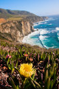 Beautiful coastline along the pacific in big sur california Royalty Free Stock Images