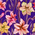 Beautiful colorful amaryllis flowers with purple leaves on blue background. Seamless spring pattern. Watercolor painting. Royalty Free Stock Photo