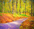Beautiful colorful autumn park Royalty Free Stock Photography