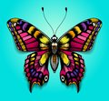 Beautiful colorful butterfly on blue background. Bright tattoo for your back. Tropical realistic butterfly. Machaon Royalty Free Stock Photo