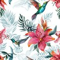 Beautiful colorful flying hummingbirds and red lily flowers on white background. Exotic tropical seamless pattern.