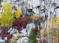 Beautiful colorful shot of a stone cliff with yellow, green and red trees Royalty Free Stock Photo