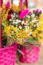 Beautiful colorful spring background with flowers in a wicker pink baskets, close-up. Copy space for greeting postcard