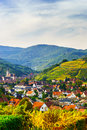 Beautiful colorful vineyards in alsace autumn hills Stock Photos