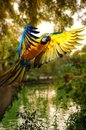Beautiful colourful parrot over tropical background Stock Photography
