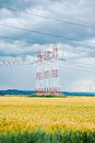 Beautiful colourful yellow field with blue sky white and red electricity poles on and dar cloudy Royalty Free Stock Images