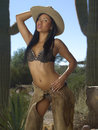 Beautiful Cowgirl In Front of Cactus Royalty Free Stock Photos